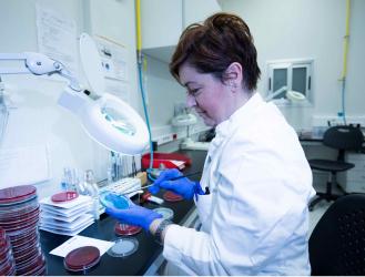 Epidemioloske mikrobioloske usluge